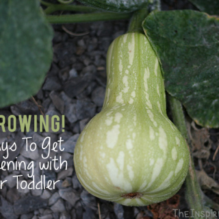 Montessori Monday: 5 Ways To Get Gardening with Toddlers