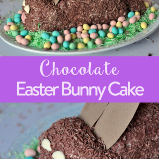 Chocolate Easter Bunny Cake: Lactose Free