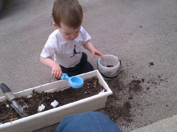 Dirt Sensory Box: 5 Ways to Start Gardening with Toddlers by theinspiredhome.org