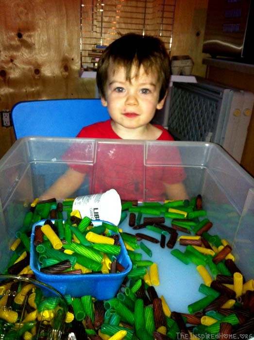 Pasta Sensory Bin: Colour Sorting