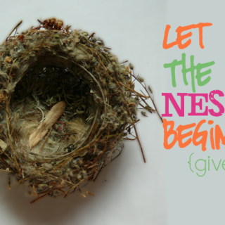 Let the Nesting Begin! {Giveaway}