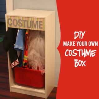 DIY Costume Box