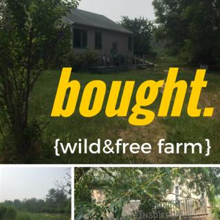 BOUGHT {wild&free farm}