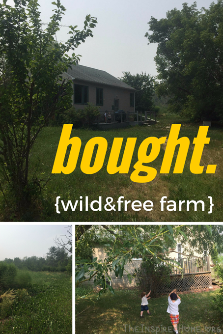 bought wild and free farms