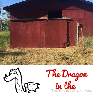 The Dragon in the Barn