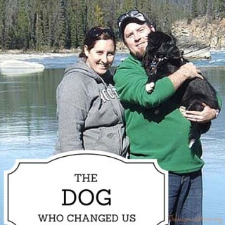 The Dog Who Changed Us