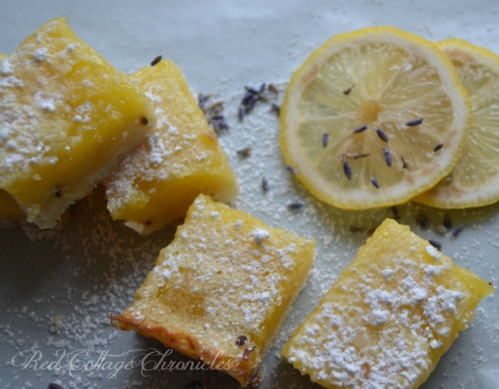 a floral twist on a classic lemon square