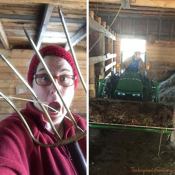 Pitch Fork and Farm Chores