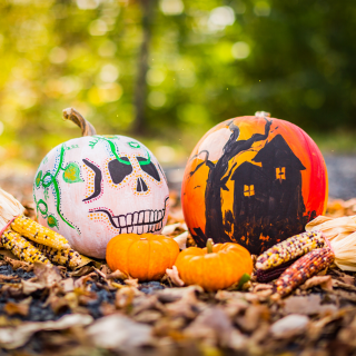Halloween Pumpkin Decorating & Crafts